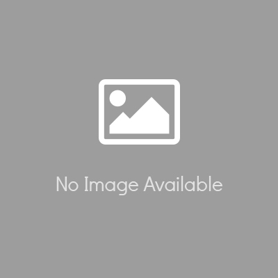 SHELF1U300BLK
